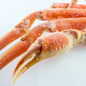Norway's Snow Crab Ruling Boosts Oil Claim