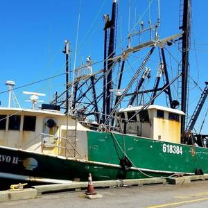 Fishing Company hit with $500K Fine