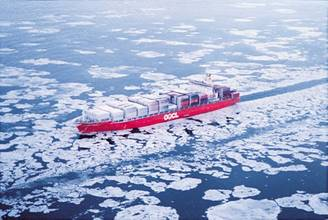 Environmental Groups: IMO Polar Code Too Weak