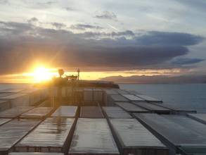 Cheaper Fuel to Boost Container Shipping