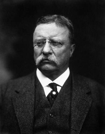 File Theodore Roosevelt (photo: United States Library of Congress)