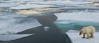 File Arctic scene: Photo in public domain