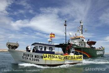 File Fishing Law Reform:Image courtesy of Greenpeace