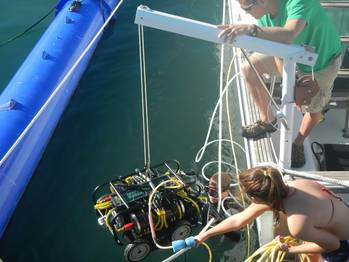 File SeaRobotics' HullBUG is lowered into the water for a field test.