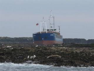 File MV Danio hard aground