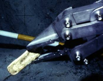 File Manipulating recovery of a gold bar: Image courtesy of Odyssey Marine Exploration