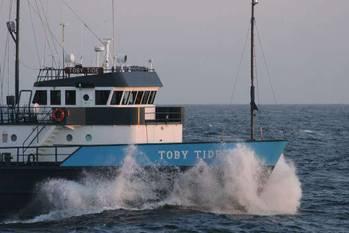 File Toby Tide