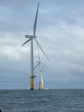 File  A wind farm (Photo: BMT).