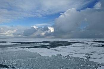 File Arctic Summer Ice: Photo courtesy of NOAA