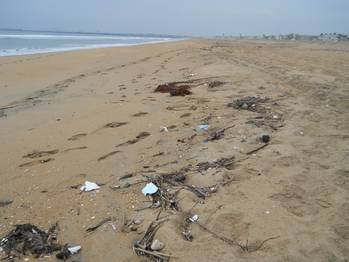 File Marine debris found on Seal Beach, Orange County, California. (Credit:NOAA)