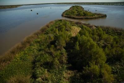 Aerial view of Louisiana shoreline (Photo: NOAA)