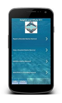 Dolphin & Whale 911 app: Image courtesy of NOAA Fisheries