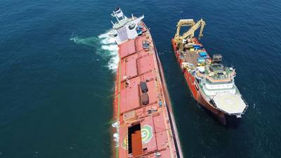 Stellar Banner suffered significant hull damage after running aground off the coast of Brazil in February/ (Photo: Brazilian Institute of Environment and Renewable Natural Resources)