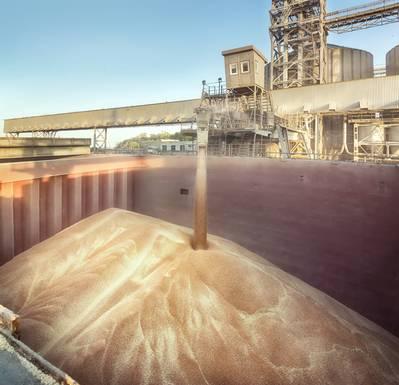 File image: Soy cargo loading (CREDIT: AdobeStock / © Igor Strukov