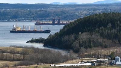 File photo: Nordic Bulk Carriers