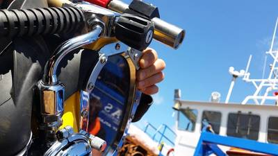 Image: Briggs Marine