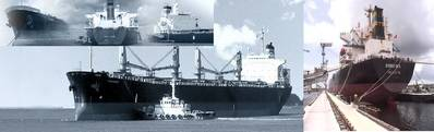 Image: DryShips Inc
