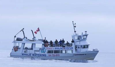 Leviathan II (File photo: Jamie's Whaling Station and Adventure Centres)