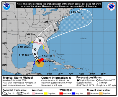 Micheal's projected track line (CREDIT: NHC)