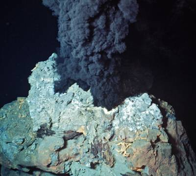 Photo courtesy of the Woods Hole Oceanographic Institution