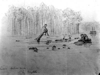 "Sketch of the ship's wreck, entitled ""Cairo Submerged"", probably depicting the scene immediately after she was sunk by a Confederate mine in the Yazoo River, Mississippi, on 12 December 1862. Note men sitting on projecting timbers and swimming in the water nearby. Courtesy of Mrs. A. Hopkins, 1927. U.S. Naval Historical Center Photograph."