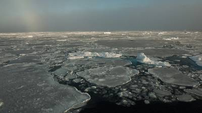 Small remnants of thicker, multiyear ice float with thinner, seasonal ice in the Beaufort Sea on Sept. 30, 2016. Credit: NASA/GSFC/Alek Petty