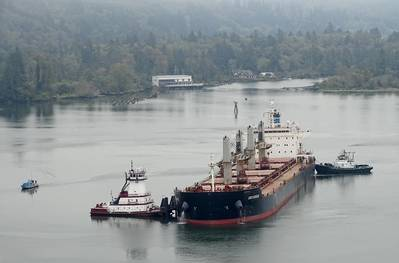 The 608-foot Genco Auvergne ran aground in the Columbia River near Skamokawa Vista Park, Wash., Oct. 1, 2020. The vessel was refloated at high tide with the aid of three tugs: Carolyn Dorothy, Samantha S. and Willamette. (U.S. Coast Guard photo courtesy of Sector Columbia River)