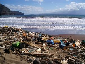 The Hawaii Department of Land and Natural Resources will continue organizing cleanups to remove debris from beaches in Kaho'olawe.