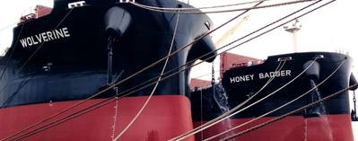 Фото: Star Bulk Management Inc.