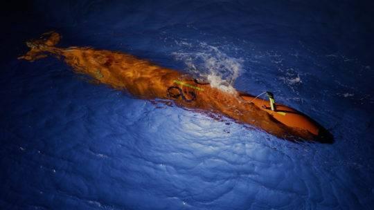 (फोटो: महासागर इन्फिनिटी)