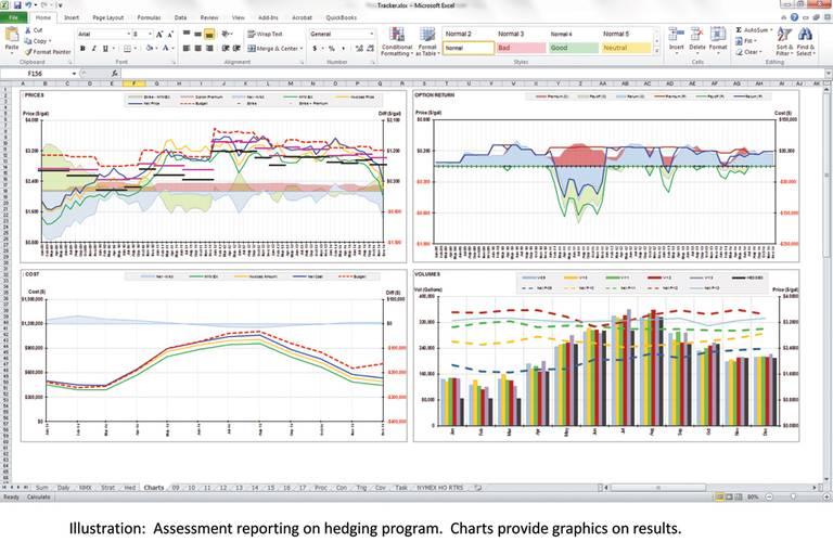 An example of an Assessment reporting on hedging program. The Charts provide graphics on results.