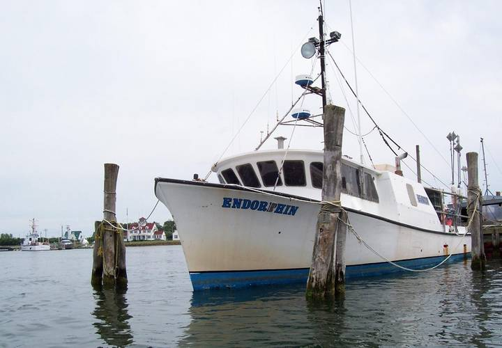 Endorphin, a 58-foot commercial fishing vessel moored to a pier in Montauk, N.Y. (USCG Photo. July, 2006)