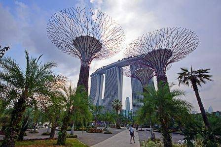 Gardens by the Bay, Singapore (Photo: EDT)