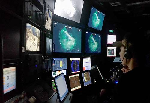 Kakani Katija watches a giant larvacean on video monitors in the ROV control room on board the research vessel Western Flyer. Image: Kim Reisenbichler © 2015 MBARI