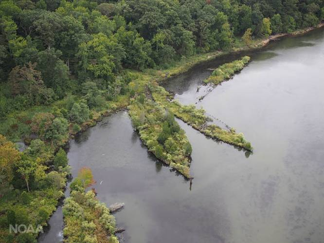 Mallows Bay in the Potomac River contains more than 100 known and still-to-be-discovered shipwrecks. (Photo: Marine Robotics & Remote Sensing, Duke University)
