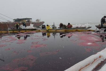 U.S. Coast Guard photo by Petty Officer 3rd Class Jonathan Lally.